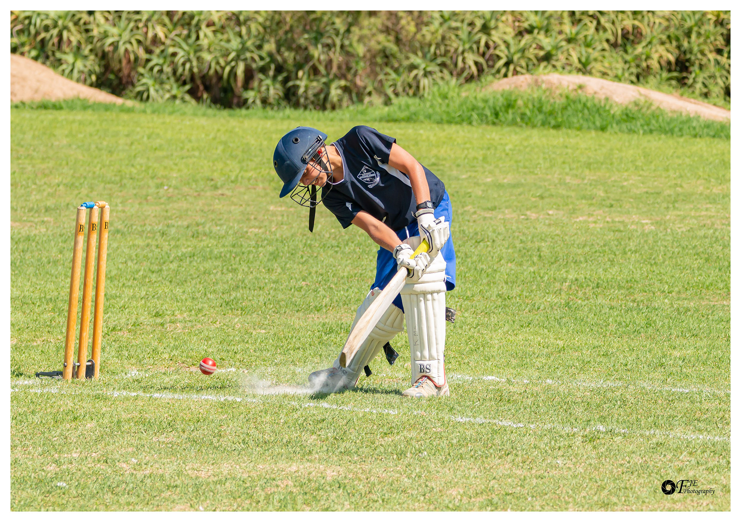 Knysna Montessori Cricket